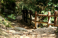 The path up Mt. Misen