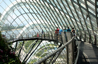 Singapore: Inside the Cloud Forest