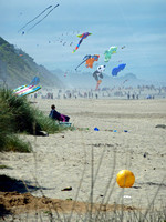 Lincoln City Kite Festival