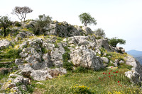 Mycenae bathed in wildflowers