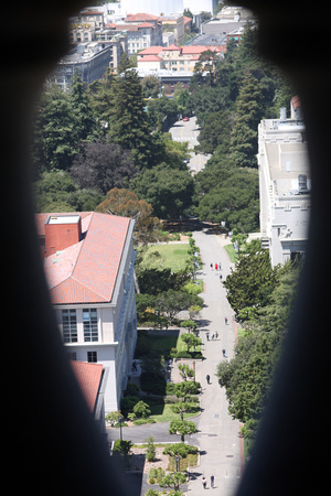 Looking down from the campanile on the Cal campus