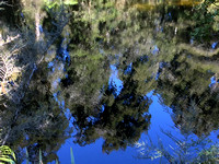 Reflection in the water at Lake Ellery